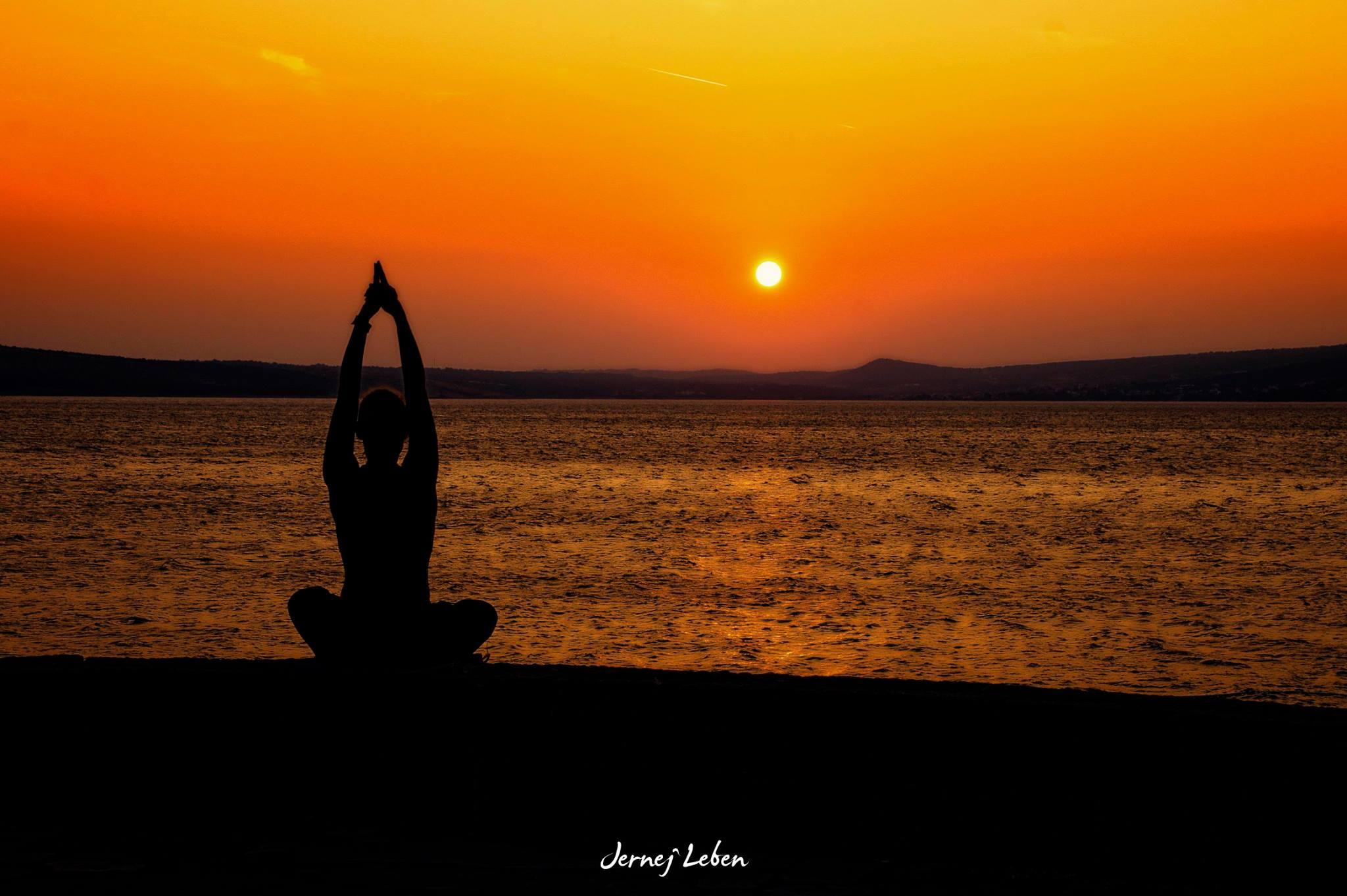 Različne smeri joge