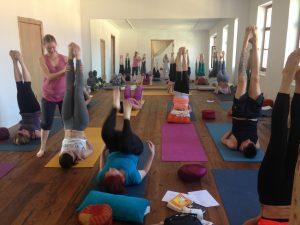 eva-debevec-tecaj-joga-meditacija-pranajama-tecaj-ucitelj-joge-evisense-yoga-osebna-rast-telo-um-ljubljana