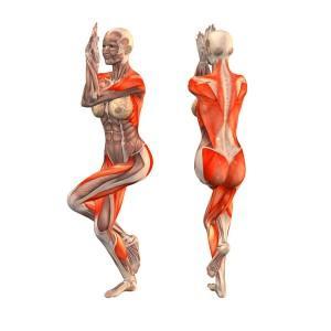 tečaj-učitelj-joge-ljubljana-eva-debevec-evisense-joga-telo in um-asana-pranajama-meditacija-garudhasana-položaj orla