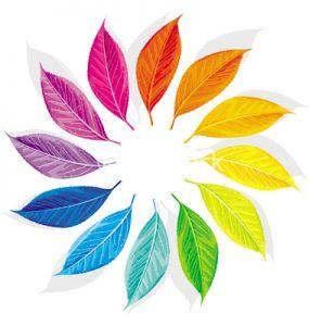 Color wheel as a dozen multi-colored leaves